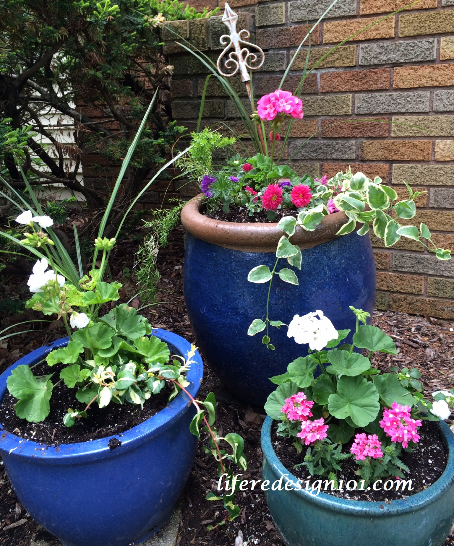 No Fail Flower Container Gardens For Beginners Life